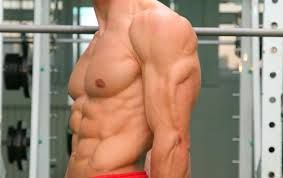male triceps