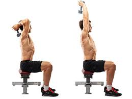 Seated DB Triceps Extension