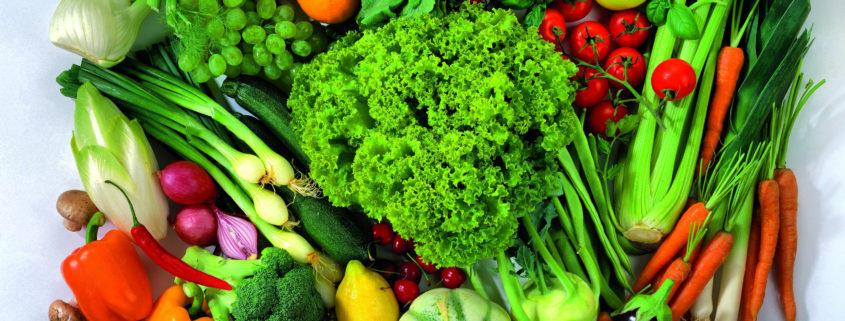 vegetarian-diet-health-benefits