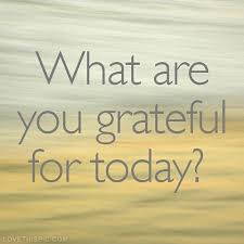 What are you grateful for today