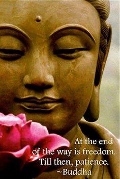 buddha patience