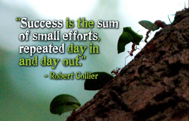 success is the sum of small efforts repeated