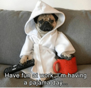 Have fun at work pug.jpg