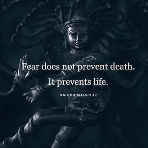 fear does not prevent nacuib