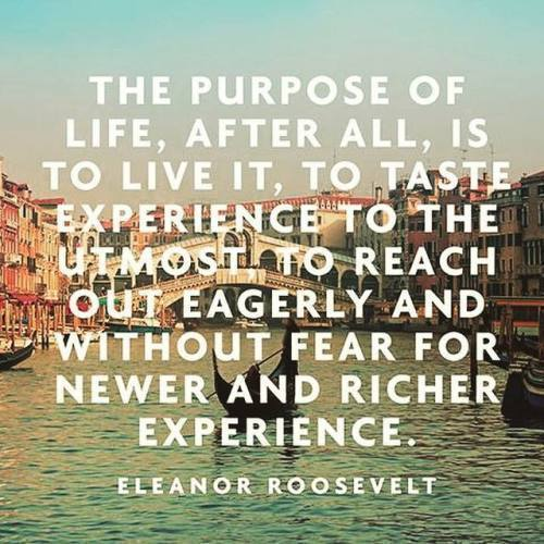 roosevelt - the purpose of life