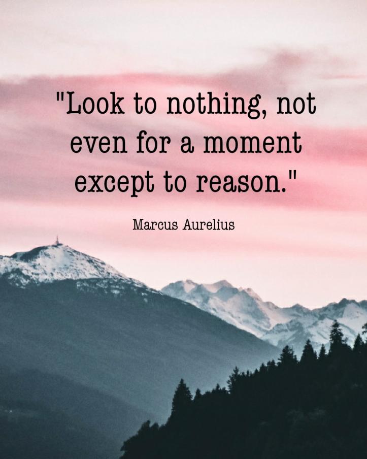 Marcus Aurelius - look to nothing
